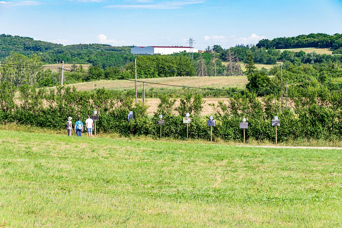 CommunaysART & Jardins 2021 : Et le vent emportera tout